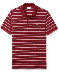 Lacoste - Short Sleeve Stripe Pique Regular Fit Polo, Ph3154 - Lyst