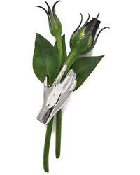 Lady Grey Grasp Botanical Brooch In Rhodium