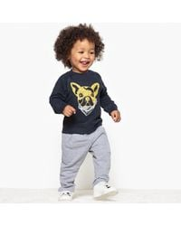 La Redoute - Sweatshirt And Joggers Set, 1 Month-3 Years - Lyst