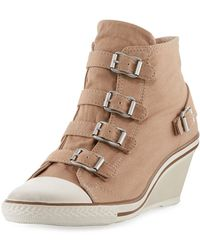 9af423797e6e Lyst - Ash Virgin Suede Buckled Sneakers in Brown