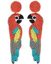 Kenneth Jay Lane - Parrot Seed Bead Earrings - Lyst