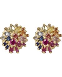 Polly Wales - Gold Colette Couture Rainbow Sapphire Stud Earrings - Lyst