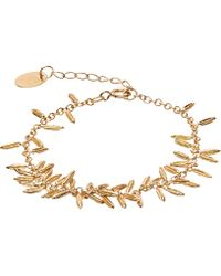 Alex Monroe - Gold-plated Fennel Kissing Seed Bracelet - Lyst