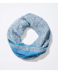 LOFT - Bordered Floral Infinity Scarf - Lyst