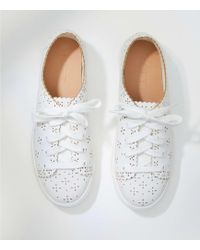 LOFT - Eyelet Lace Up Sneakers - Lyst