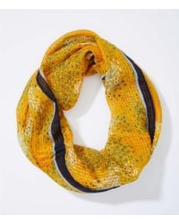 LOFT - Bordered Floral Sketch Infinity Scarf - Lyst
