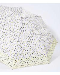 LOFT - Lemon Umbrella - Lyst