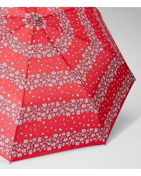 LOFT - Azalea Striped Umbrella - Lyst