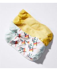 LOFT   Bird & Stripe No Show Sock Set   Lyst