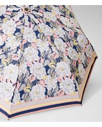 LOFT - Border Floral Umbrella - Lyst
