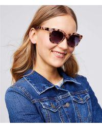 LOFT - Modern Tortoiseshell Print Square Sunglasses - Lyst