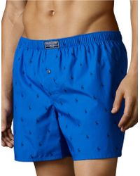 Pink Pony - Allover Pony Cotton Boxer - Lyst