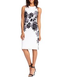 Maggy London - Floral-print Sleeveless Dress - Lyst