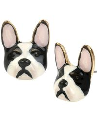Betsey Johnson - Bulldog Stud Earrings - Lyst