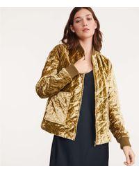 Lou & Grey - Quilted Velvet Jacket - Lyst