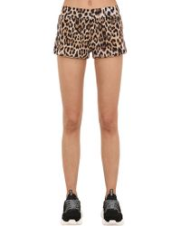 Moschino - Animal Printed Jersey Shorts - Lyst