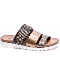 Dirty Laundry Cinderz (bronze Multi Snake Metallic) Shoes