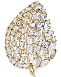 Charter Club - Gold-tone Crystal Stone Leaf Pin, Only At Macy's - Lyst
