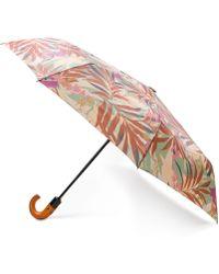 Patricia Nash - Palm Leaves Magliano Umbrella - Lyst