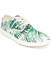 Steve Madden - Florider Sneakers - Lyst