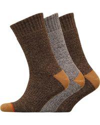 Weatherproof - Three Pack Thermal Crew Socks Medium Brown - Lyst