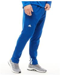 6bb126af4 adidas - Ekit Snap Basketball Trousers Collegiate Royal/white - Lyst