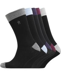 French Connection - Fc Five Pack Socks Black Toe - Lyst