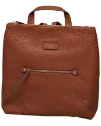 Fiorelli - Lexi Backpack Tan Casual Debs - Lyst