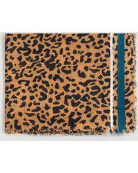 Mango - Leopard Print Scarf - Lyst