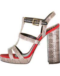 Dolce & Gabbana - Ayers Sandal - Lyst