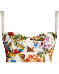 Dolce & Gabbana | Floral-print Bustier Cropped Top | Lyst