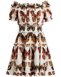 Dolce & Gabbana - Butterfly Print Cotton Poplin Mini Dress - Lyst