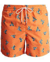 Polo Ralph Lauren - Traveller Hummingbird-print Swim Shorts - Lyst