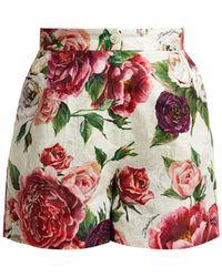 Dolce & Gabbana - Floral Print Cotton Blend Jacquard Shorts - Lyst