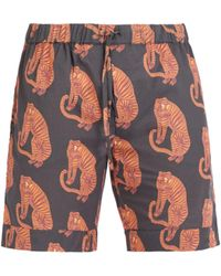Desmond & Dempsey - Tiger Printed Pyjama Shorts - Lyst