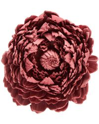 Loewe - X William Morris Ancient Rose Leather Brooch - Lyst