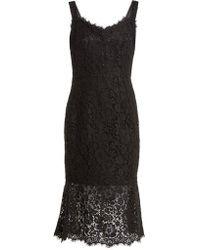 Dolce & Gabbana - - Scalloped Edge Lace Dress - Womens - Black - Lyst