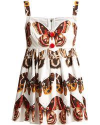 Dolce & Gabbana - Butterfly-print Cotton Top - Lyst