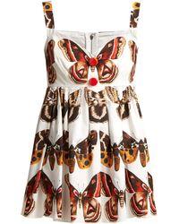 22f74231c09 Dolce   Gabbana - Butterfly Print Cotton Top - Lyst