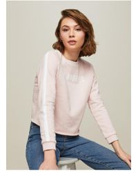 Miss Selfridge - Petite Nude Side Striped Sweatshirt - Lyst