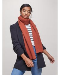 Miss Selfridge - Orange Plain Ribbed Scarf - Lyst