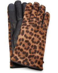 Maison Fabre - Iggy Leather-trimmed Leopard-print Cashmere Gloves - Lyst