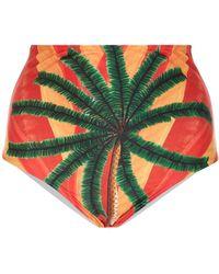 Agua de Coco - High-rise Printed Bikini Briefs - Lyst