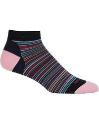 Icebreaker - Lifestyle Low Cut Fine Gauge Multi-mini Stripe Sock - Lyst