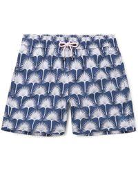 e736aff3de On sale Pink House Mustique - Mid-length Printed Swim Shorts - Lyst