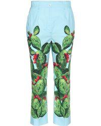 Dolce & Gabbana - Exclusivos de mytheresa.com: pantalones de algodón estampado - Lyst