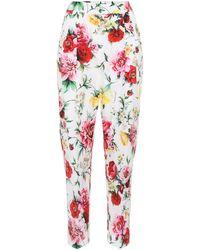 Dolce & Gabbana - Pantalones de algodón con estampado floral - Lyst