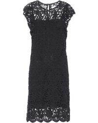 Velvet - Ally Cotton Lace Dress - Lyst