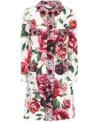 Dolce & Gabbana - Embellished Floral-printed Coat - Lyst