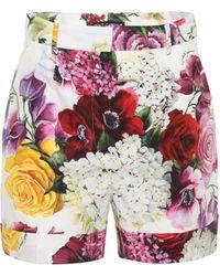 Dolce & Gabbana - Shorts De Popelina De Algodón - Lyst